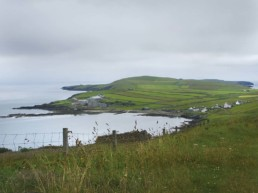 green coastal landscape
