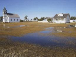 flooded field in Portsmouth Village