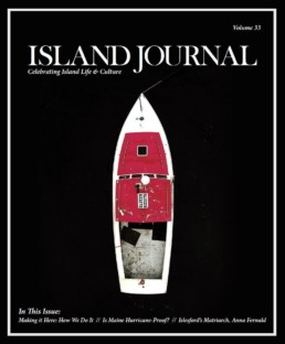 Island Journal 2017 cover