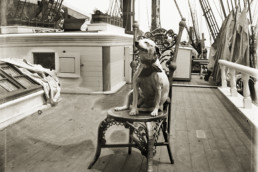 old photo of dog on boat