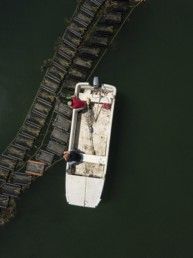 bird's eye shot of a two people in a dinghy
