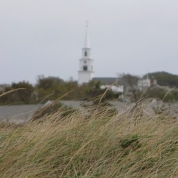 dune grass with church steeple in background