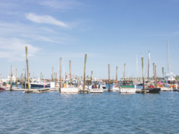 boats in working harbor